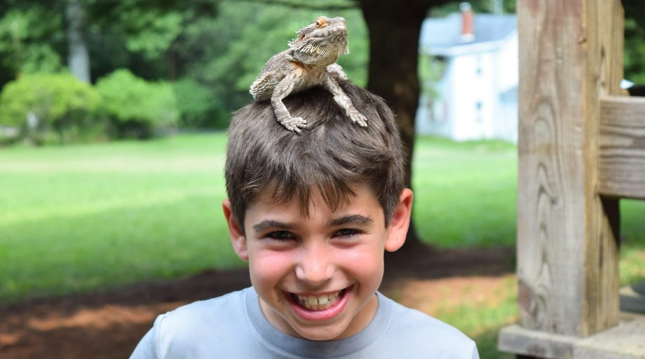 Boy with a lizard on his head
