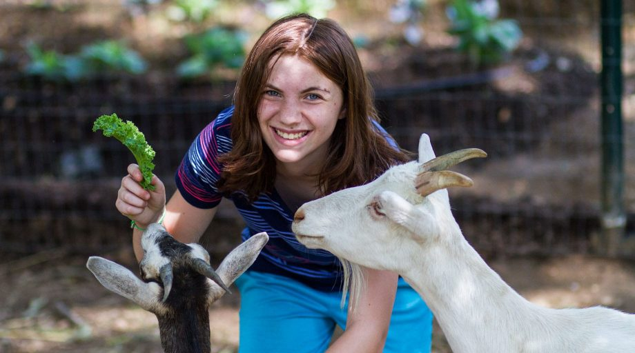 Louise camper with goats